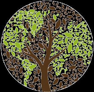 The Season of Creation | ascensionnyc org